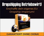 Dropshipping Betriebswirt Lehrgang Erfahrungsbericht